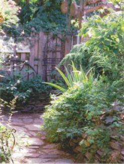late_summer_garden