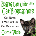 Click to go to the Cat Blogosphere