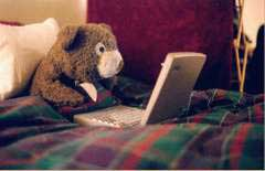 teddy bear tucked into bed with laptop