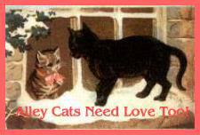 Alley Cats Need Love Too!