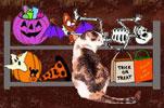 Catpreparingforhalloween