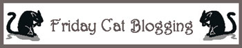 Click buttons to go to Friday Cat Blogging