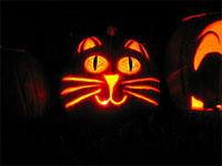happy cat jack-o-lantern