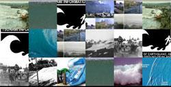 montage-a-google: tsunami