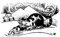 Yule cat eating boy